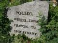 _mini-P1150154.JPG