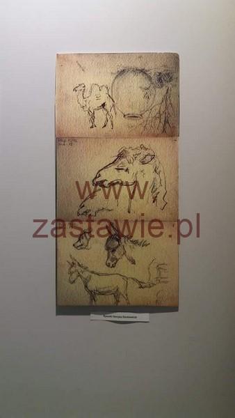 received_868501746587795 (Kopiowanie)