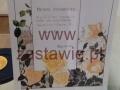 received_868507499920553 (Kopiowanie)