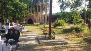 Cmentarz w Ługach