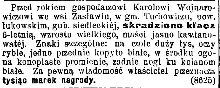 Gazeta Świąteczna 1991/1919